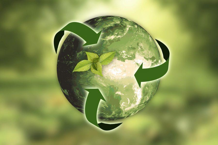 Gestión sostenible de la cadena de valor.