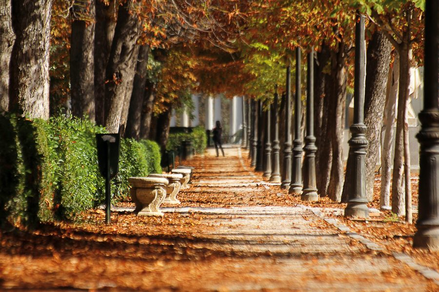 Acciona Service parques y jardines históricos Madrid