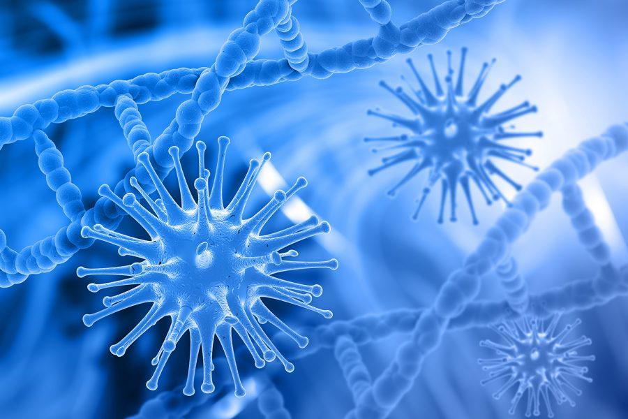 Virus, coronavirus